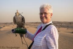 Verenigde Aarabische Emiraten, Dubai, Desert Safari