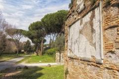 Rome (24)