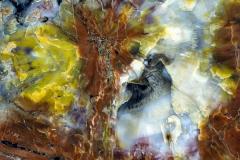 amerika-arizona-petrifiedforest