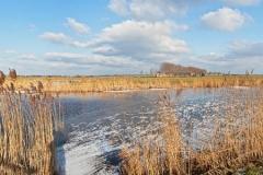 Winter-Alblasserwaard-Groot-Ammers-02
