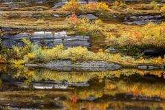 Noorwegen-herfst 2018