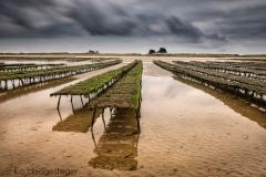Frankrijk, Normandië, Manche