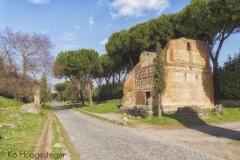 Rome (18)