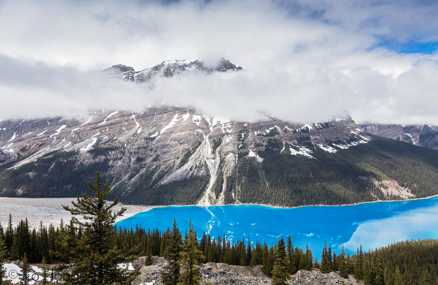 Canada 2016, Icefield Parkway