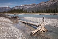 Canada 2016 Kootenay National Park